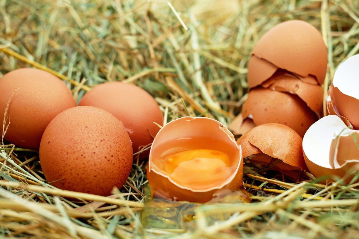 Quelques recettes beauté à base d'œuf